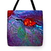Abalone Five Tote Bag