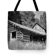 Abandoned Homestead Tote Bag