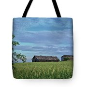 Abandoned In Grass Tote Bag