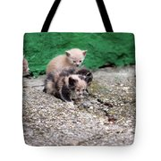 Abandoned Kittens On The Street Tote Bag