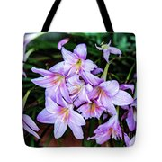 Abbey Flowers Tote Bag