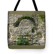 Abbey Ruins Tote Bag