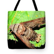Abbotts Sphinx Moth Tote Bag