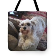 Abby Watching Over Us II Tote Bag