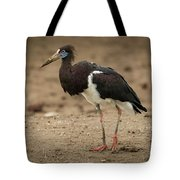 Abdim Stork Walks Right-to-left Across Muddy Ground Tote Bag