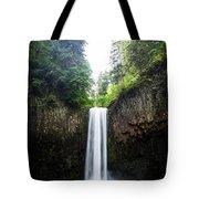 Abiqua Falls 2 Tote Bag