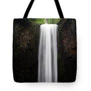 Abiqua Falls Tote Bag