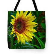 About Face And Stand Tall Tote Bag