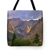 About The Light Tote Bag