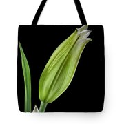 White Oriental Lily About To Bloom Tote Bag