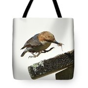 About To Land Tote Bag