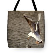 About To Swoop Tote Bag