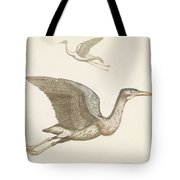Above A Flying Crane And Beneath A Flying Pelican, Anonymous, 1688 - 1698 Tote Bag