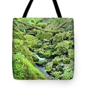 Above Moine Creek 2 Tote Bag