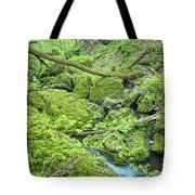 Above Moine Creek Tote Bag