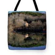 Above The Waterfall Reflection Tote Bag
