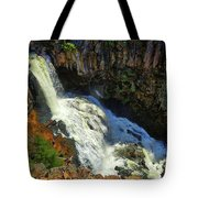 Above Undine Falls Tote Bag