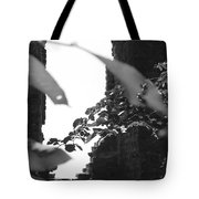 Absence Of Window Tote Bag