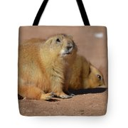 Absolutely Adorable Prairie Dog With  A Friend Tote Bag