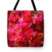 Abstract 052310 Tote Bag