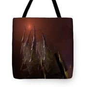 Abstract 072011a Tote Bag