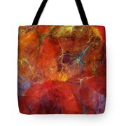 Abstract 081310 Tote Bag