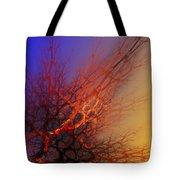 Abstract 112810a Tote Bag