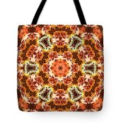 Abstract 120410 Tote Bag