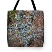 Abstract And Lichen Tote Bag