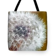 Abstract Dandy Lion On - Orange Tote Bag