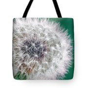 Abstract Dandy Lion - Teal Tote Bag