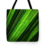 Abstract Of Green Leaf Of Exotic Palm Tree Tote Bag