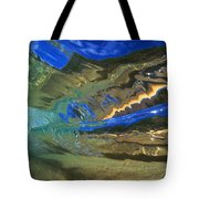 Abstract Underwater View Tote Bag