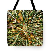 Abstraction 3099 Tote Bag