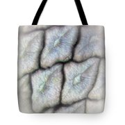Abstractions From Nature - Pine Cone Tote Bag
