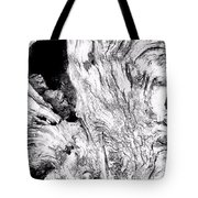 Abstraction Of Nature No. 4 Tote Bag