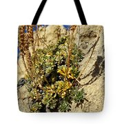 Abundance In The Midst Of Austerity Tote Bag