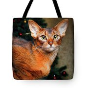 Abyssinian Cat In Christmas Tree Background Tote Bag