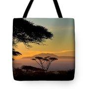 Acacia Land Tote Bag