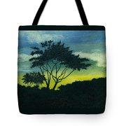 Acacia Tree Tote Bag