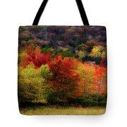 Acadia Colors Tote Bag