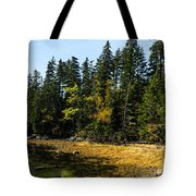 Acadia Cove Tote Bag