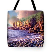 Acadia National Park Tote Bag