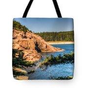 Acadia National Park Rocky Shoreline Tote Bag