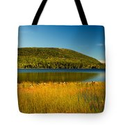 Acadia, National Park Shoreline And Marsh Maine Tote Bag