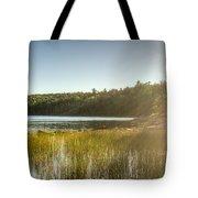 Acadia National Park Shoreline In Evening Sun Tote Bag