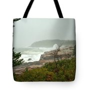 Acadian Storm Tote Bag
