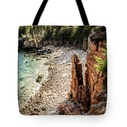 Acadia's Monument Cove Tote Bag