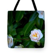 Accents Of Love In Color Tote Bag