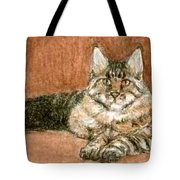 Aceo Maine Coon Cat Tote Bag